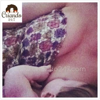 Criando247 LactanciaMijo2012