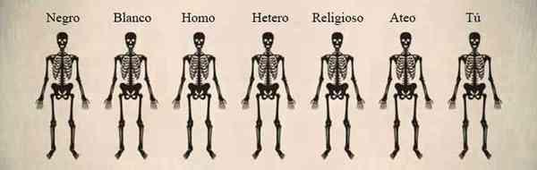 7 esqueletos idénticos, cada uno con un título superior que dice negro, blanco, homo, hetero, religioso, ateo, tú